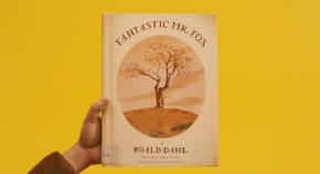 Fantastic Mr Fox illustrated by Donald Chaffin