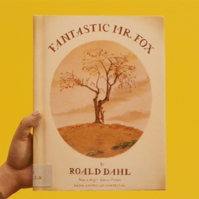 Fantastic Mr Fox illustrated by DonaldChaffin