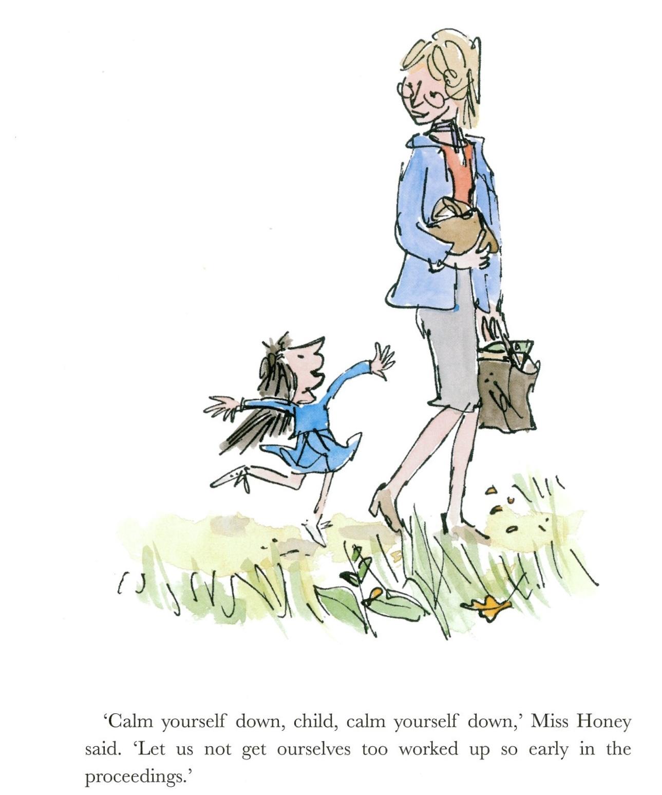Matilda   Roald Dahl  Story Books Role Play  Roald   Page