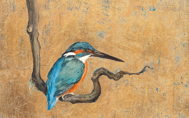 gold_kingfisher