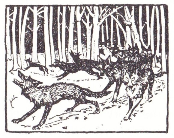 Image (124)
