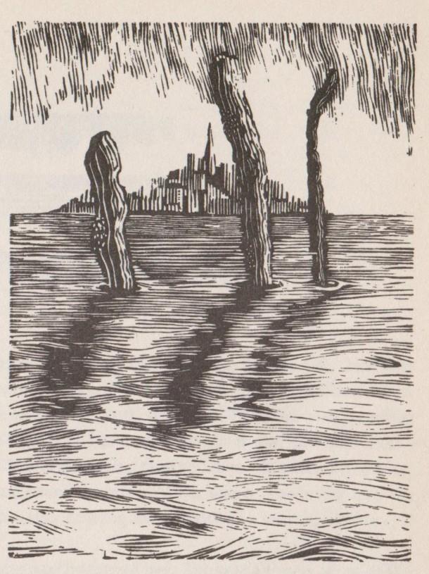 Image (193)