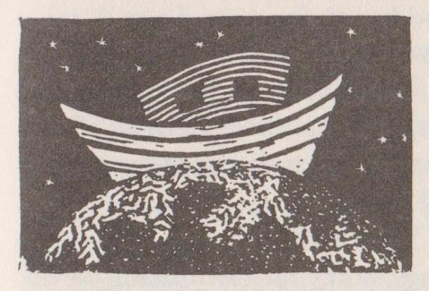 Image (197)
