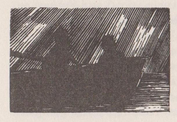 Image (199)